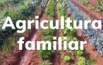 Agricultura Familiar avança com políticas públicas de incentivo ao produtor