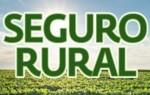 Seguro rural passa de R$ 370 milhões para R$ 420 milhões