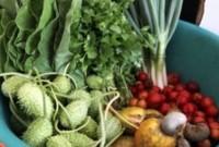 Preços de frutas e hortaliças tiveram queda no mês de outubro