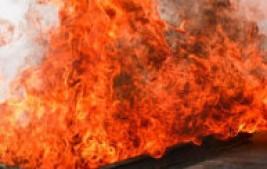 Órgãos federais se unem para combater queimadas