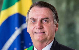 PRESIDENCIALISMO DE COALIZAÇÃO POLÍTICO-PARTIDÁRIO, PATRIMONIALISTA, COMBATIDO PELO PRESIDENTE (I)
