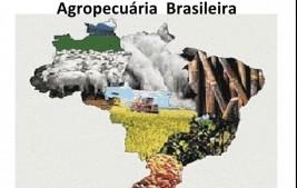Valor Bruto da Produção Agropecuária é estimado em R$ 689,97 bilhões para 2020