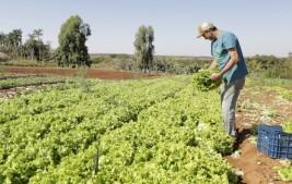 Governo repassa crédito de R$ 220 milhões para agricultura familiar