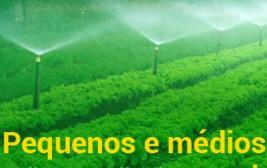 Plano Safra traz mais de R$ 66 bilhões para pequenos e médios produtores