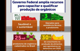 Governo Federal garante R$ 3 milhões para capacitação e ampliação de produção de alimentos orgânicos