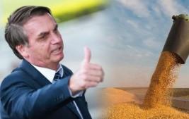 Produção de grãos na safra 2020/21 deve chegar a 252,3 milhões de toneladas