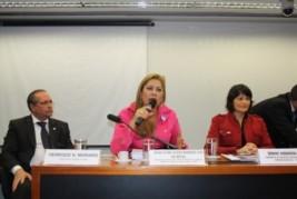 Presidente da Anajur participa da primeira audiência pública do PLP/205/2012