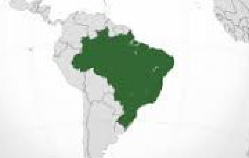 BRASIL: PARA SAIR DA CRISE