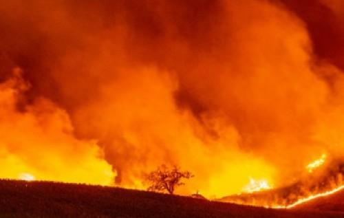 Operação Verde Brasil aplica cerca de R$ 142 milhões em multas e combate 1.835 focos de incêndio