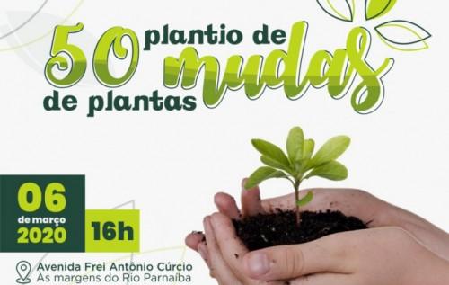 Prefeitura realizará plantio de mudas às margens do Rio Parnaíba