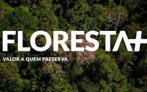 Ministério do Meio Ambiente instituiu o Programa Floresta+