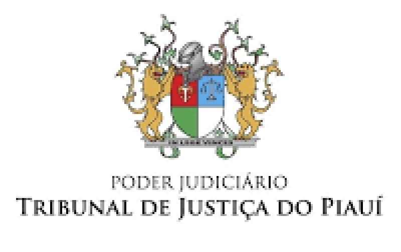 AO PRESIDENTE DO TRIBUNAL DE JUSTIÇA DO PIAUÍ; DESEMBARGADOR SEBASTIÃO RIBEIRO MARTINS