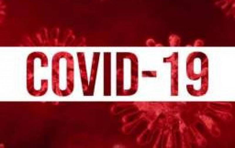 Brasil vencendo a COVID - 19