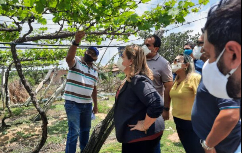 Governo visita produtores de Guadalupe para definir prioridades de investimentos
