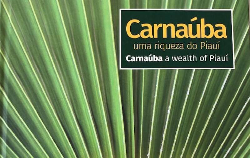 Livro sobre Carnaúba revela riqueza do Piauí